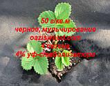 Агроволокно p-50g 3.2*100м черное AGREEN 4сезона Итальянское качество, фото 8