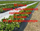 Агроволокно p-50g 3.2*100м черное AGREEN 4сезона Итальянское качество, фото 9
