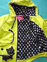 Модная детская ветровка Кошечка для девочек 3 -5 лет. Цвет лайм, фото 2