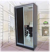 Шкаф-купе 2-х дверный с зеркалом рис. пескоструй