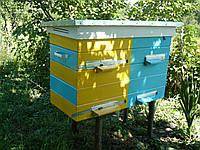 Улей украинский утепленный с пчёлами