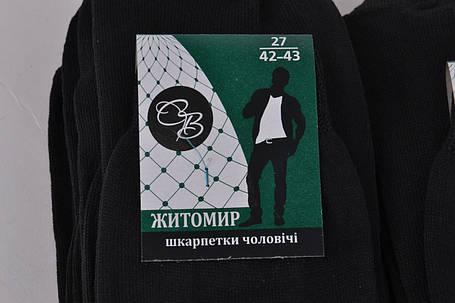 Мужские носки Житомир Черные р.42-43 (Y880/27-BL) | 10 пар, фото 2