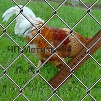 Плетеная сетка Рабица 45х3,0 заводская, ГОСТ 5336-80