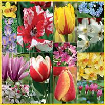 "Декупажная салфетка ""Весна-1"", 33*33 см, 18 г/м2, Maki, SLWI003801, 003801"