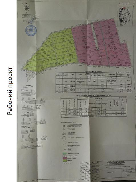 Продажа сельскохозяйственного предприятия в Одесской области, Измаильский район