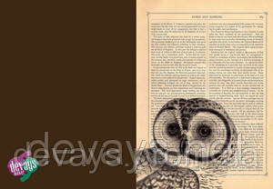 Чехол для паспорта Винтажная Сова, фото 2