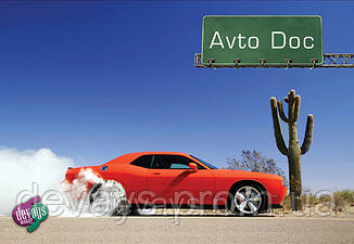 Обложка для автодокументов   Аризона, фото 2