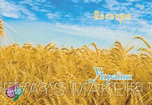 Обкладинка на паспорт Украина, фото 2