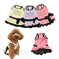 Платье Puppy Angel PA-DR082 Lovely Princess для собак, фото 1