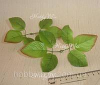 Листья розы двойные  2 шт (большие)