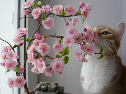 Цветы, букеты и головки в розницу