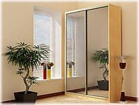 Шкаф-купе 2-х дверный с 2-мя зеркалами
