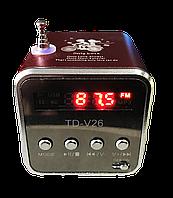 Колонка TD-V26