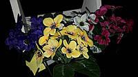 Мелкоцветик - букеты из искусственных цветов, разные цвета, выс. 23 см., 50 шт. в упаковке, 4.95 гр.