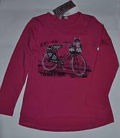 Модные регланы лонгсливы на девочку  р-ры 116,122,128,134,140,146  Венгрия Glo-story GCX-7610 134/140