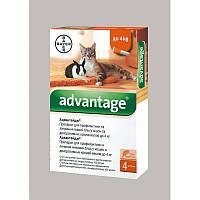 Капли для веса до 4кг от блох и клещей для котят и кошек Адвантеж/Advantage 40