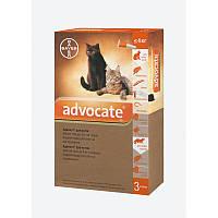 Капли для веса до 4кг от блох клещей глистов для котят и кошек Адвокат Байер Advocate Bayer