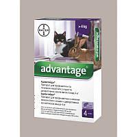 Капли для веса 4-8кг от блох и клещей для кошек Адвантеж80 Advantage 80 Bayer