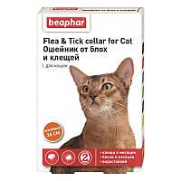 Ошейник от блох и клещей 35 см, 6 месяцев, для кошек, оранжевый, Беафар