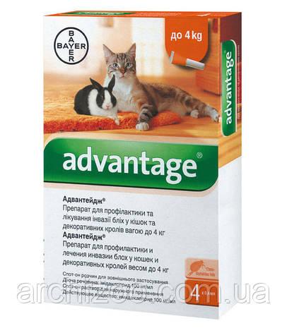 Advantage 40- для котов весом до 4кг и кроликов 1пипетка Bayer, фото 2