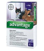 Advantage 4-8 кг для кошек и декоративных кроликов 1 пипетка