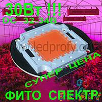 30Вт Фито светодиод для роста растений