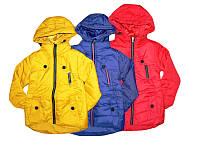 Куртка демисезонная для девочек, GRACE, размеры 98-128, арт. G-61193