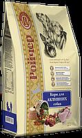 Ройчер (Roycher) Сухой корм для активных собак 10 кг +0,5 кг в подарок