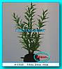 Растение Атман S-133B, 30см