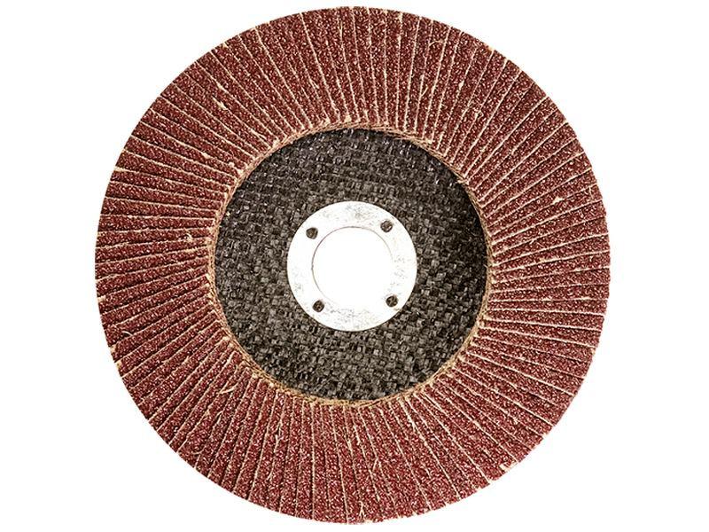 Круг лепестковый торцевой Титан Абразив 125*22 (P80) (A,N) T29