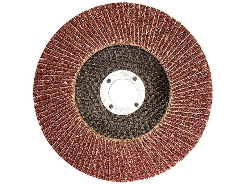 Круг лепестковый торцевой Титан Абразив 125*22 (P100) (E,R) T29