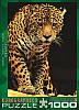 """Пазл """"Леопард"""", 1000 элементов, EuroGraphics"""