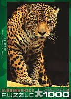 """Пазл """"Леопард"""", 1000 элементов, EuroGraphics, фото 1"""