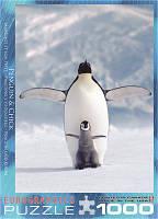 """Пазл """"Пингвин с пингвиненком"""", 1000 элементов, EuroGraphics"""