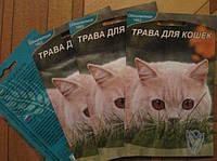 Трава для кошек, 3гр.