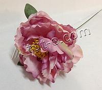 Ветка розового пиона