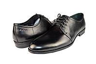 Мужские туфли faber 117301.1   весенние , фото 1