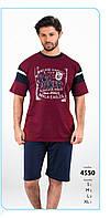 Пижама шорты мужская FALKOM арт: 4550