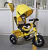 Велосипед трехколесный TILLY Trike T-364