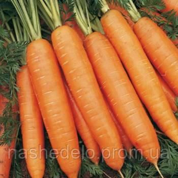 Бангор Ф1 100 000 семян (1,8-2,0) морковь Бейо
