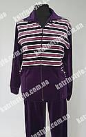 Женский велюровый спортивный костюм больших размеров