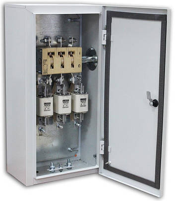 Ящик с рубильником и предохранителем ЯРП-100, фото 2