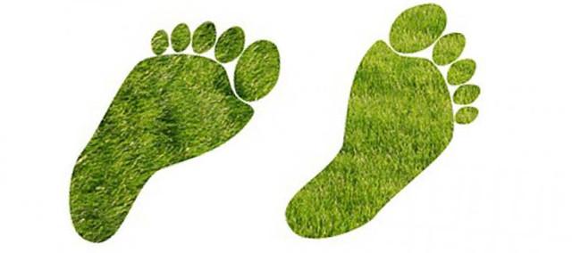 Обувь ортопедическая и диабетическая