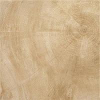 Керамическая плитка Provenza W-Age Heartwood (Beige) Lucidato/Провенза В-Эдж Хартвуд (Беж) Люцидато