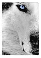 Светящиеся картина Startonight Волк Черно Белые Животный мир  Печать на Холсте Декор стен Дизайн дома Интерьер