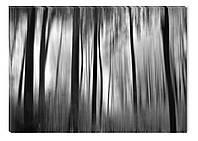 Светящиеся картина Startonight Лес Абстракция Черно Белые Печать на Холсте Декор стен Дизайн дома Интерьер