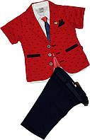 Нарядный костюм для мальчика (пиджак, рубашка, шорты, галстук, ремень) размер 104 110