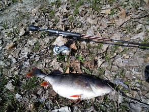 Спиннингоавя рыбалка