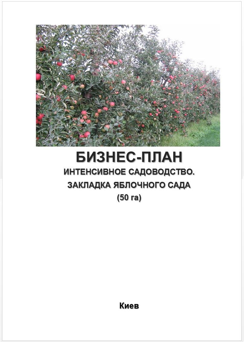 Бизнес – план (ТЭО). Яблоневый сад. Производство яблок Сбор Хранение Яблочный бизнес Интенсивное садоводство