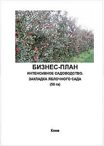 Бизнес – план (ТЭО). Яблоневый сад. Производство яблок. Сбор. Хранение.Яблочный бизнес.Интенсивное садоводство